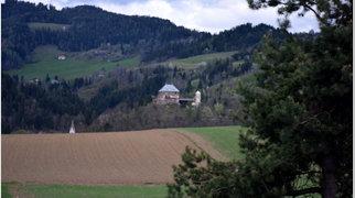 Burg Haimburg>