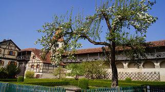 Burg Harburg>