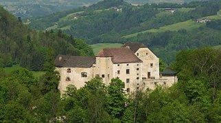 Burg Plankenstein>