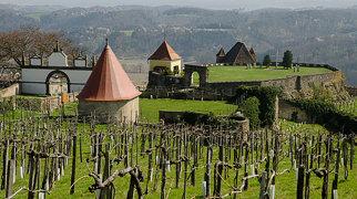 Burg Riegersburg>