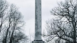 Burton Pynsent Monument>