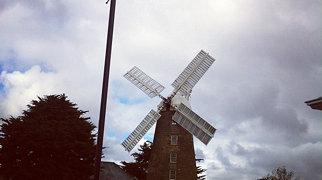 Callington Mill>