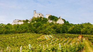 Castle Falkenstein (Lower Austria)>