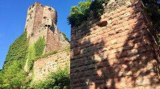 Château de Kintzheim>