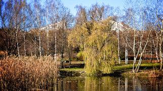 Chișinău Botanical Garden>