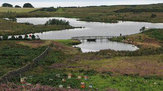 Clyde Muirshiel Regional Park>