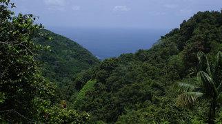 Cocos Island>
