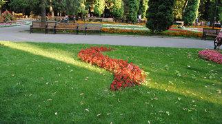 Copou Park>