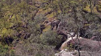 Davies Creek Falls>