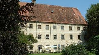 Dellmensingen Castle>