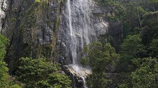 Diyaluma Falls>