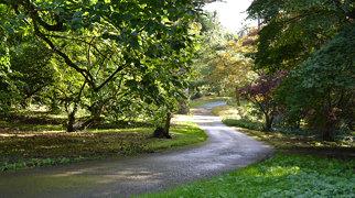 Dyffryn Gardens>