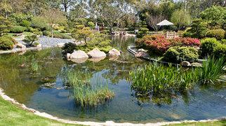 Earl Burns Miller Japanese Garden>