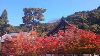 Eikan-dō Zenrin-ji>