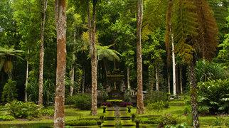 Eka Karya Botanic Garden>