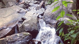 El Yunque National Forest>