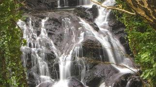 Fairy Falls, Trefriw>