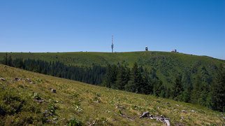 Feldberg (Black Forest)>