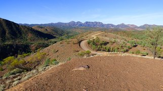 Flinders Ranges>