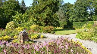 Geilston Garden>