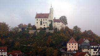 Goswinesteyn Castle>