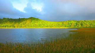 Grand Etang Lake>