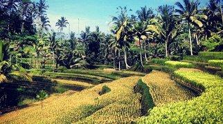 Gunung Kawi>