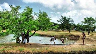 Guyana Zoo>