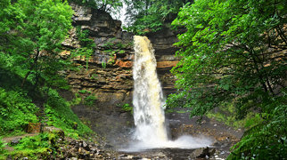 Hardraw Force>