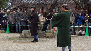 Hikone Castle>