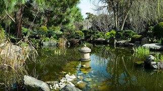 Himeji Gardens, Adelaide>