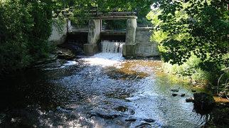 Inglis Falls>