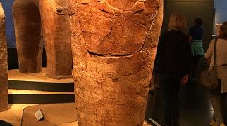 Museum Israel>