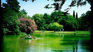 Jardin botanique E.M. Heckel>