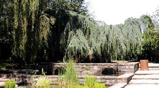 Jardin botanique de l'Evêché>