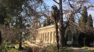 Jardin des plantes de Montpellier>
