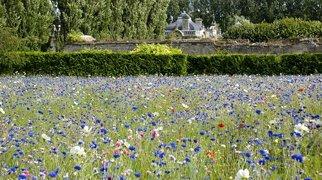 Jardins du Nouveau Monde>