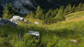 Julské Alpy>