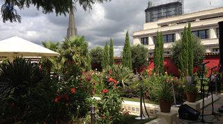 Kensington Roof Gardens>