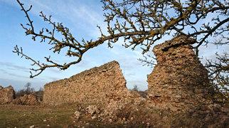 Zamek w Krewie>