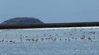 Lago Uru Uru>