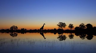 Čadské jezero>