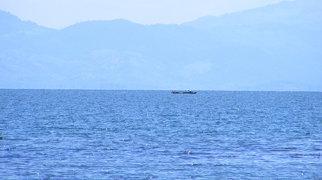 Lake Izabal>