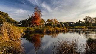 Lake Rotoroa (Waikato)>