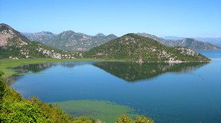 Lac de Skadar>