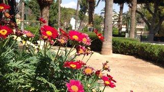 Limassol Municipality Garden>