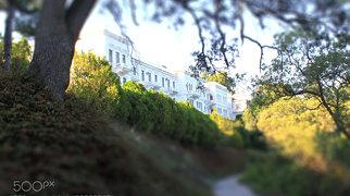 Livadia Palace>