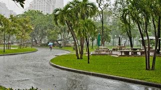 Lumphini Park>