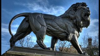 Maiwand Lion>