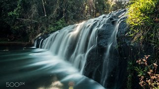 Malanda Falls>